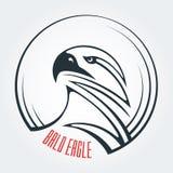 Aigle chauve, vautour, carnivore Calibre de logo Symbole de force et de détermination illustration de vecteur
