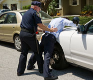 Aigle d'écart sur le véhicule de police Photo stock