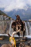 Aigle d'or Image stock