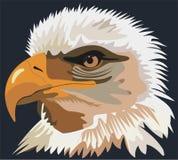 Aigle d'oiseau illustration libre de droits