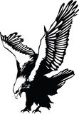 Aigle de vol de vecteur Images libres de droits