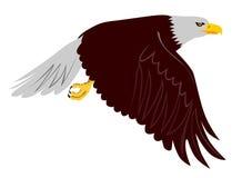 Aigle en vol Image libre de droits