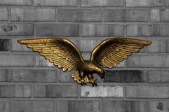 Aigle II Image libre de droits