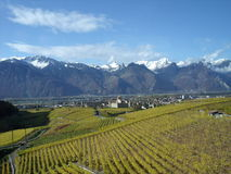 Aigle, Suisse Photo stock