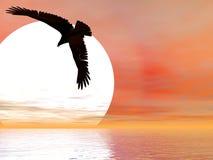Aigle Swooping illustration libre de droits