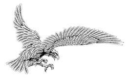 Aigle Swooping Images libres de droits