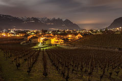 Aigle Vineyard, Switzerland Royalty Free Stock Photos