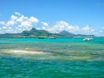 Aigrettes Маврикий острова коралла стоковое изображение