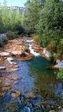 Aigua de Valls river. Summer in the river Stock Image