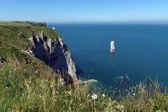 Aiguille av Belval och Etretat klippor Arkivbild