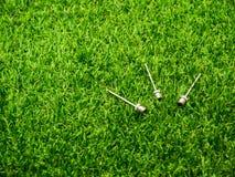 Aiguille d'inflation en métal sur l'herbe image libre de droits