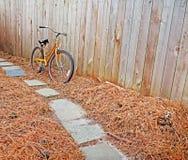 Aiguilles de bicyclette et de pin Images libres de droits