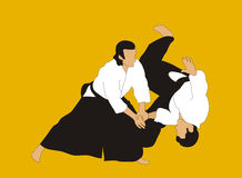 Aikido. Demonstration of aikido skills and techniques Royalty Free Stock Photography