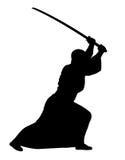 Aikido Στοκ Φωτογραφίες