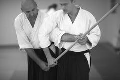 Aikido Photo libre de droits