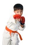Aikido boy Stock Photos