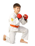 Aikido boy Royalty Free Stock Photos