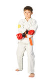 Aikido boy Royalty Free Stock Image