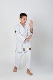 Aikido boy Stock Photography