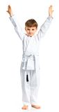 Aikido boy fighting position Stock Photography