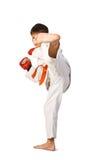 aikido chłopiec Zdjęcie Stock
