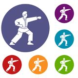 Aikido fighter icons set. In flat circle reb, blue and green color for web Stock Photography