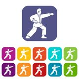 Aikido fighter icons set. Vector illustration in flat style in colors red, blue, green, and other Stock Photography
