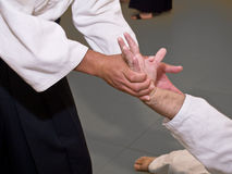 Aikido Hold Stock Image
