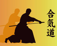 Aikido. Royalty Free Stock Image