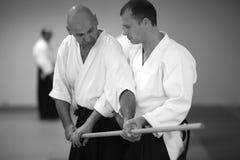 Aikido Stock Photography