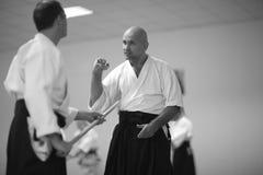 Aikido Royalty Free Stock Image