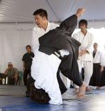 Aikido werpt Royalty-vrije Stock Fotografie