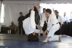 Aikido werpt Stock Afbeeldingen
