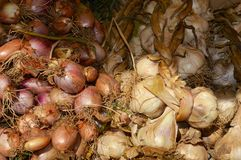 Ail et légumes en vente sur le marché dans Le Touquet, Pas De Calais, France Photographie stock libre de droits