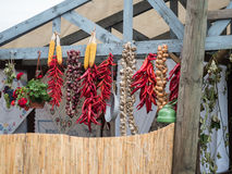 Ail, oignons colorés et poivrons rouges sur un toit en bois Image stock