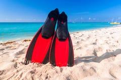 Ailerons naviguants au schnorchel sur la plage Photos libres de droits