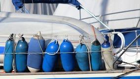 Ailes bleus Photographie stock libre de droits