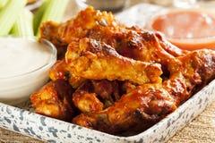 Ailes chaudes et de Spicey de Buffalo de poulet Image stock