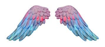 Ailes colorées de plâtre Photographie stock libre de droits