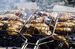 Ailes de poulet épicées Images libres de droits