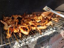 Ailes de poulet de barbecue sur le gril Photos libres de droits
