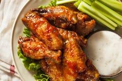 Ailes de poulet de Buffalo de barbecue Image stock