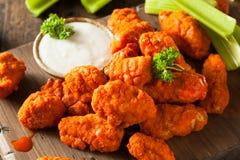 Ailes de poulet sans os chaudes et épicées de Buffalo Photos stock