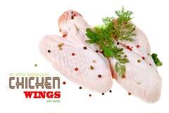 Ailes de poulet sur le fond blanc Image libre de droits