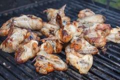 Ailes de poulet sur le gril Photographie stock libre de droits