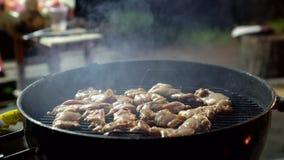 Ailes de poulet Temptingly épicées étant grillées au-dessus des charbons rougeoyants lumineux d'un barbecue de nuit banque de vidéos