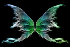 ailes féeriques Photos stock