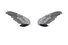 Ailes noires et blanches de plumes images stock
