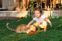 Ailurophile cute baby girl loving cat on grass Stock Images