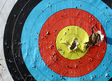 Aim 1. Aim perforated after sporting test Stock Photo